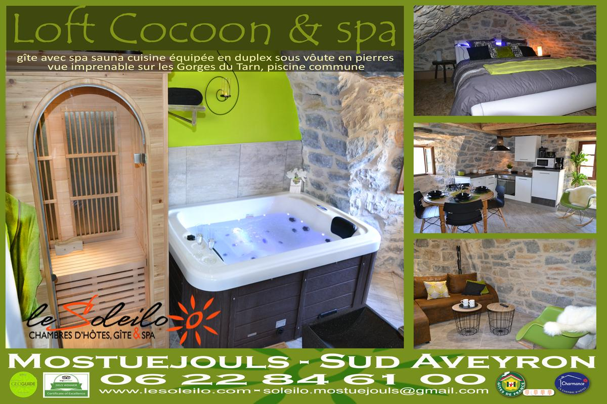 Loft Coccon spa cottage with private jacuzzi and sauna Mostuejouls Gorges du Tarn Aveyron